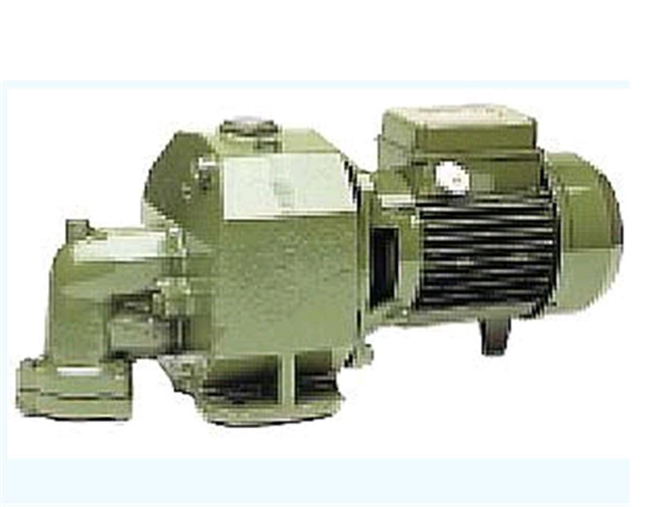 """Насос SAER M92-102-202 Электронасос самовсасывающий """"Jet"""" (со встроенным эжектором для колодцев Ш2"""")"""