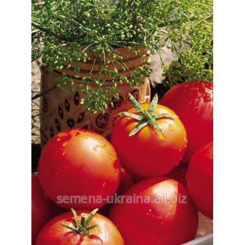 Купить Семена томатов Баллада