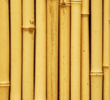 Изделия из бамбука, бамбуковые палки Донецк купить в Бахмут 45b25a54405
