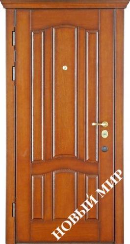 двери входные металлические новая каховка