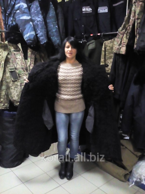 Buy Bekesha officer winter