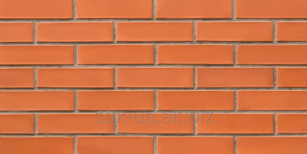 Facing bricks, red / carrot