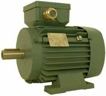 Мотор переменного тока