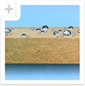 Buy Heat-insulating materials, warming of the house - the excellent decision, Rockwool heater