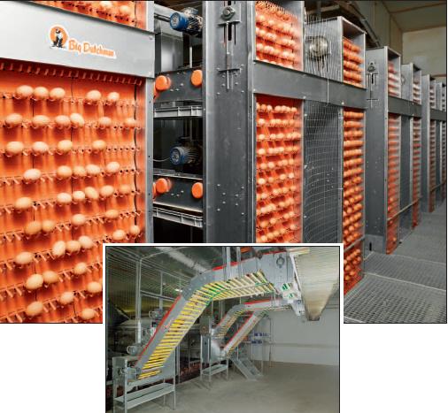 Элеватор для яиц ловители лент ленточного конвейера