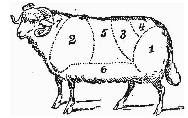 Купить Бедро баранье. Баранина. Мясо баранина.