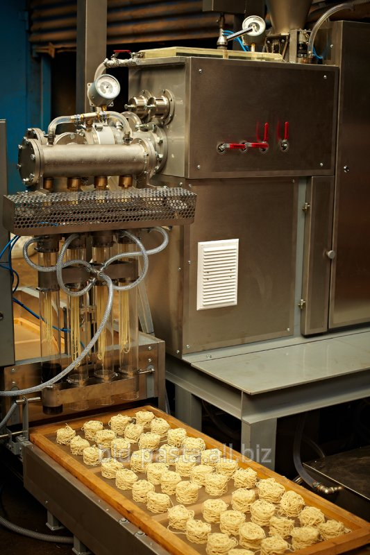 """Buy Press for production of """"Nests"""" with a productivity of 150 kg/h"""