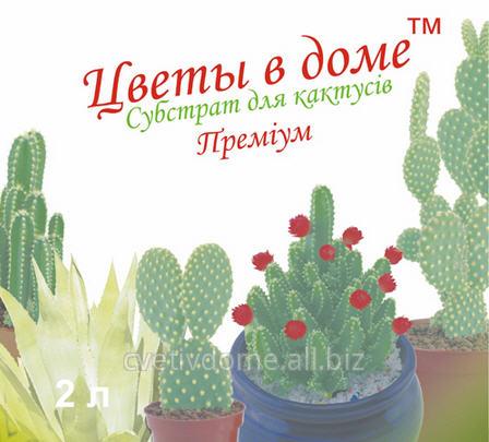 Купить Субстрат для кактусов (премиум) Цветы в доме 2 л (для выращивания суккулентов: кактусов, алоэ, агавы)
