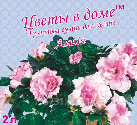 Купить Грунтовая смесь для цветов Азалия Цветы в доме 2 л