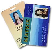 Бесконтактная карта доступа стандарта Temic GuestCard