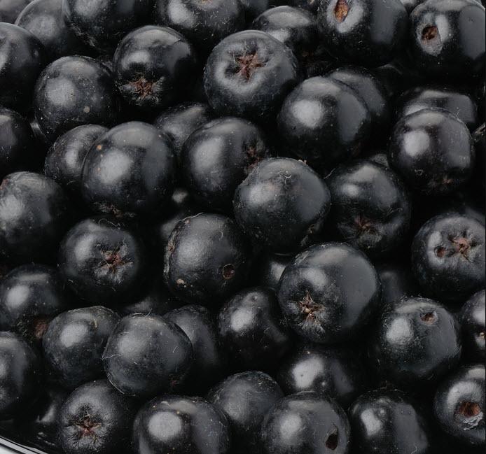 Купить Черноплодная рябина/арония замороженная IQF Aronia
