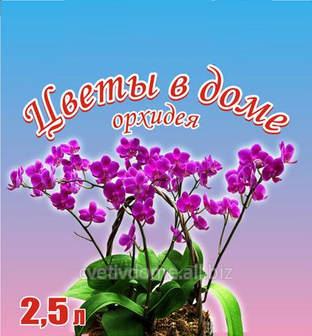 Купить Грунтовая смесь для орхидей на основе биогумуса Цветы в доме 2,5 л. Состав: биогумус, торф верховой, торф низинный, тертое кокосовое волокно, песок, вермикулит и другие минеральные добавки.