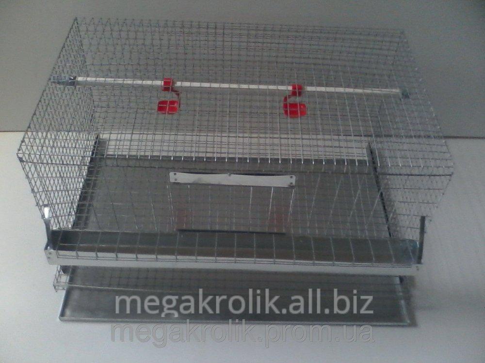 Клетка куриная КК-1