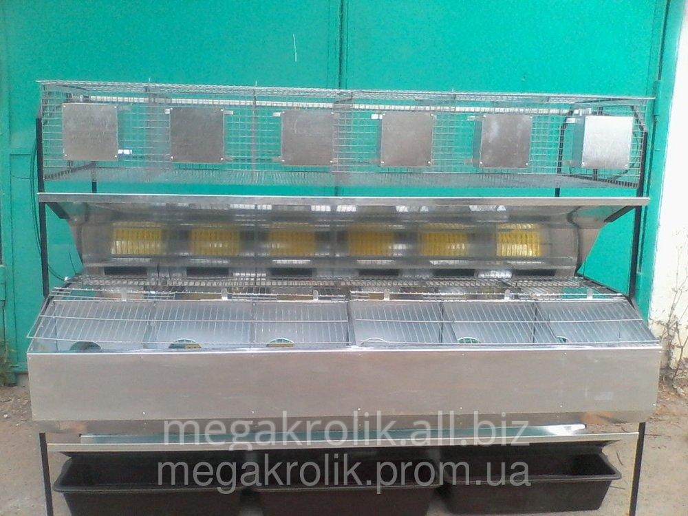 Клетка маточная, откормочная, пристенная, модифицированная КМОП-2