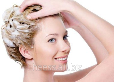 Buy Base for the ERCAQUAT HRC conditioner
