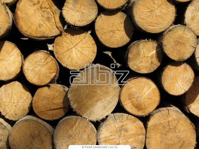 Купить Круглый лес