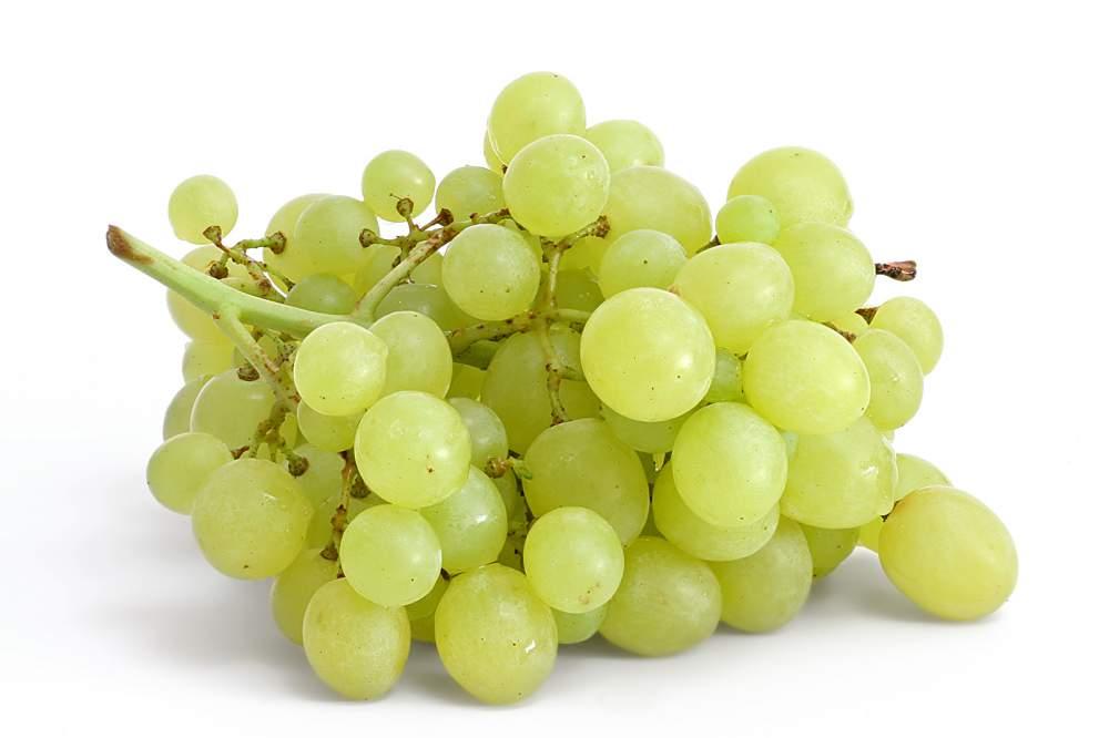 Анимационная картинка белого винограда