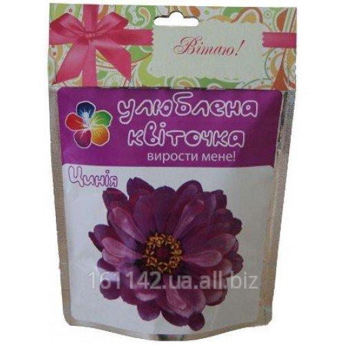 Buy Tsiniya Favourite flore