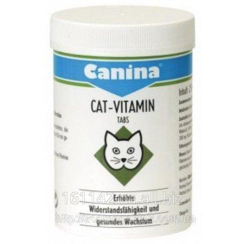 Buy Vitamin Canina Cat-Vitamin Tabs 100 complex tab
