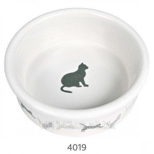 Buy Bowl ceramic 0,25l/11sm Trixie