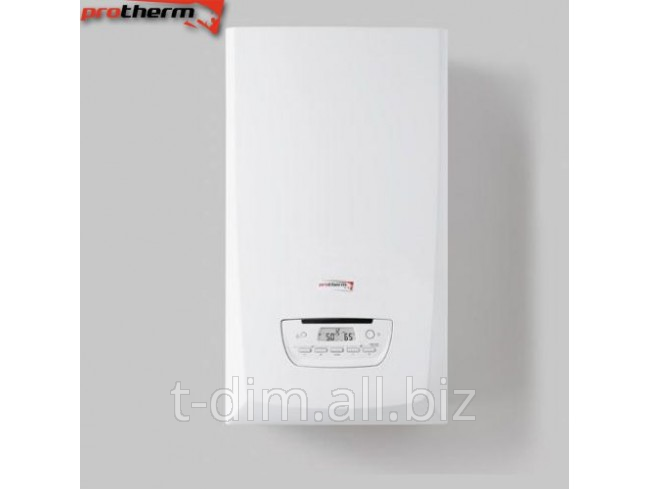 Buy Copper gas condensation double-circuit wall Protherm Panther 25 KKV