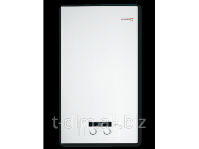 Buy Copper gas double-circuit wall Protherm Lynx 28