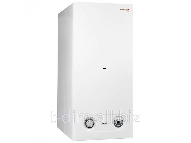 Buy Copper gas double-circuit wall Protherm Tiger 24 KTZ