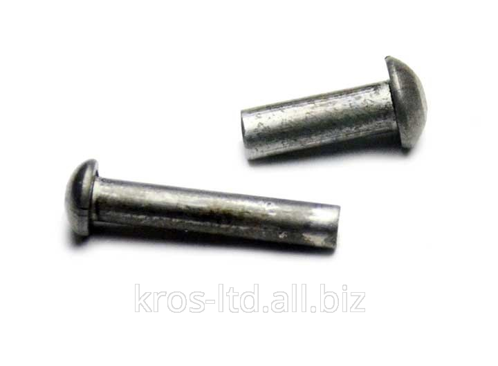 Buy Rivet with a semicircular head of GOST 10299-80