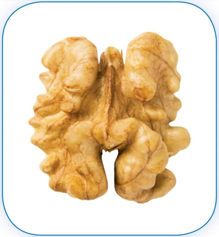 Грецкий орех - клacc «Экстра»: Равномерно светлоокрашенные ядра орехов с практическим отсутствием темно-соломенного и/или лимонно желтого оттенков и отсутствием темно-коричневых тонов.
