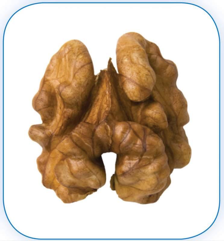 Грецкий орех - клacc 1: Ядра орехов по цвету не темнее светло-коричневого оттенка.