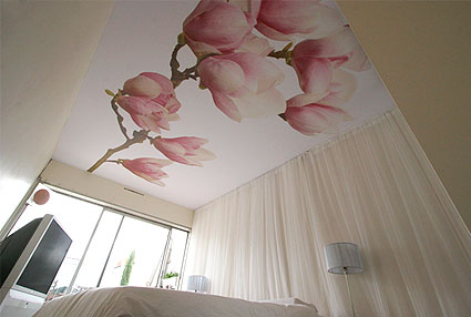 Купить Натяжные потолки с рисунком, Алчевск, Украина