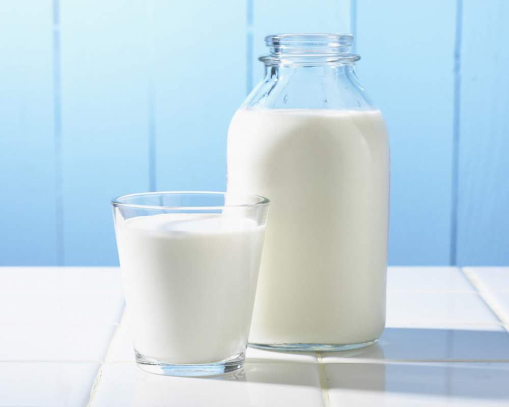 Свежее коровье молоко +38 (067) 380-56-57