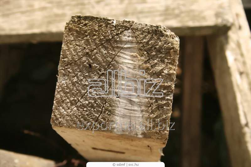 Брус естественной влажности, сосна или ель, возможна обработка антисептиком, возможна сушка, размер 200х200х(4000, 4500, 6000), на экспорт