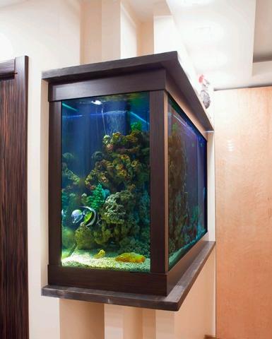 Морской или пресноводный аквариум в нише