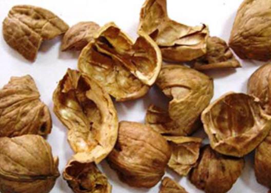 Купить Скорлупа грецкого ореха (продам) Украина