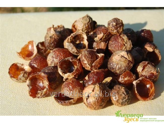 Мыльные орехи 100 грм. сухой плод без косточки, Рита, Арита, Sapindus Mukorossi, Reetha, Ritha