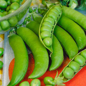 Грунди / hrundi - горох, syngenta 100 000 семян