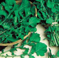 Колтивата / koltivata  — руккола, sais 50 грамм