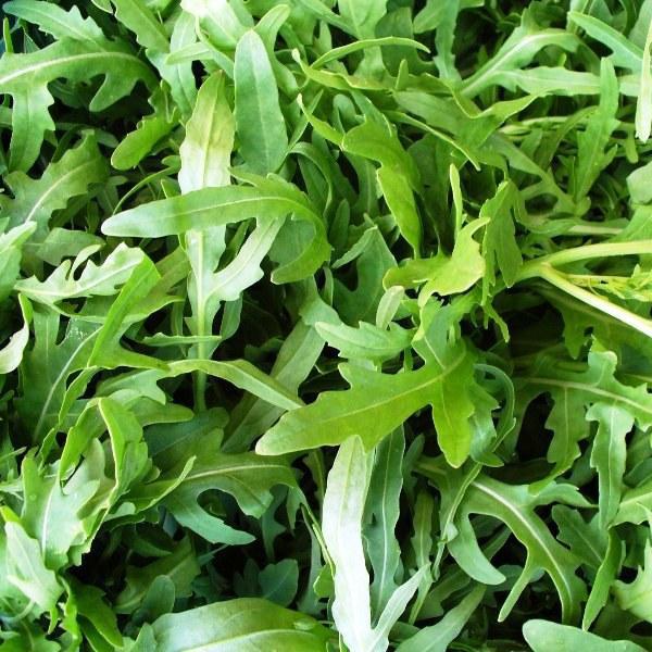 Гудитта / guditta  — руккола, hortus 50 грамм