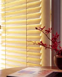 Buy Blinds horizontal plastic