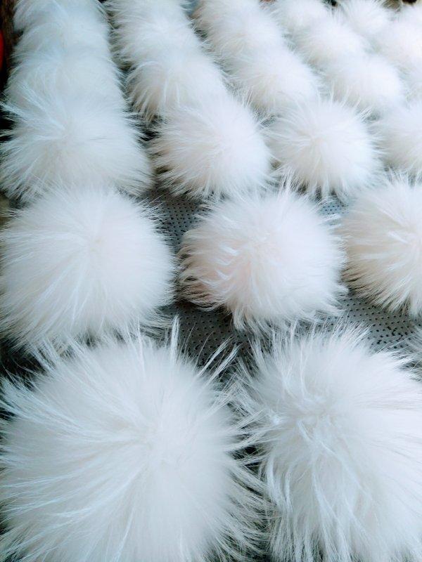 Помпоны енот альбинос