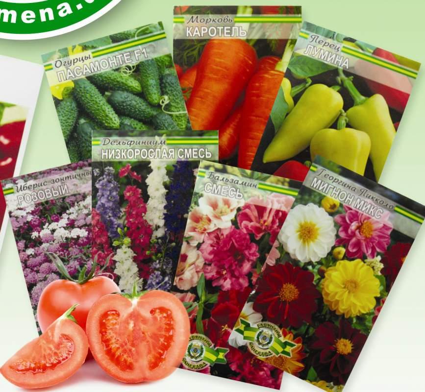 Доска объявлений по семенам овощей дать объявление о продаже квартиры в липецке
