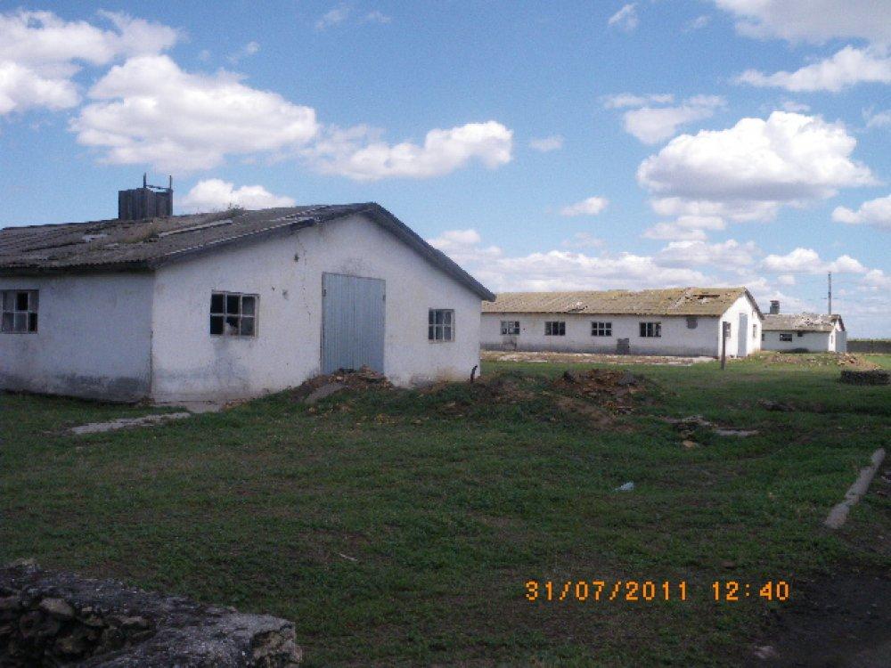 Купить Свинокомплекс в Одесской области