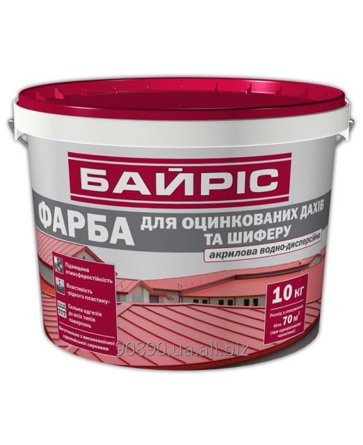 Buy Paint Bayris for a galvanized roof and slate, 5 kg, 0019