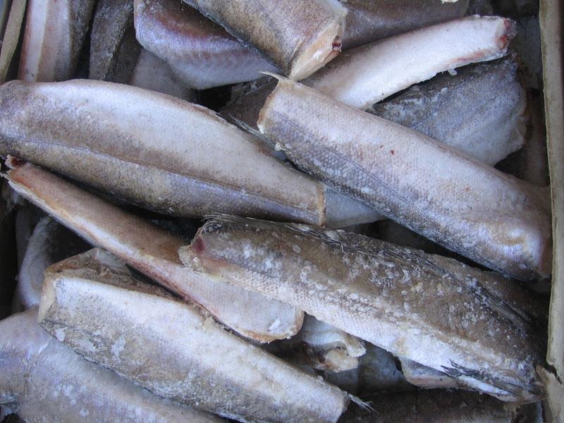 В Башкирию завезли зараженную кишечной палочкой рыбу из Канады