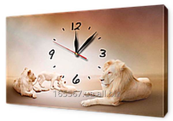 Buy Hours on a canvas 30 x 53 cm of Z103