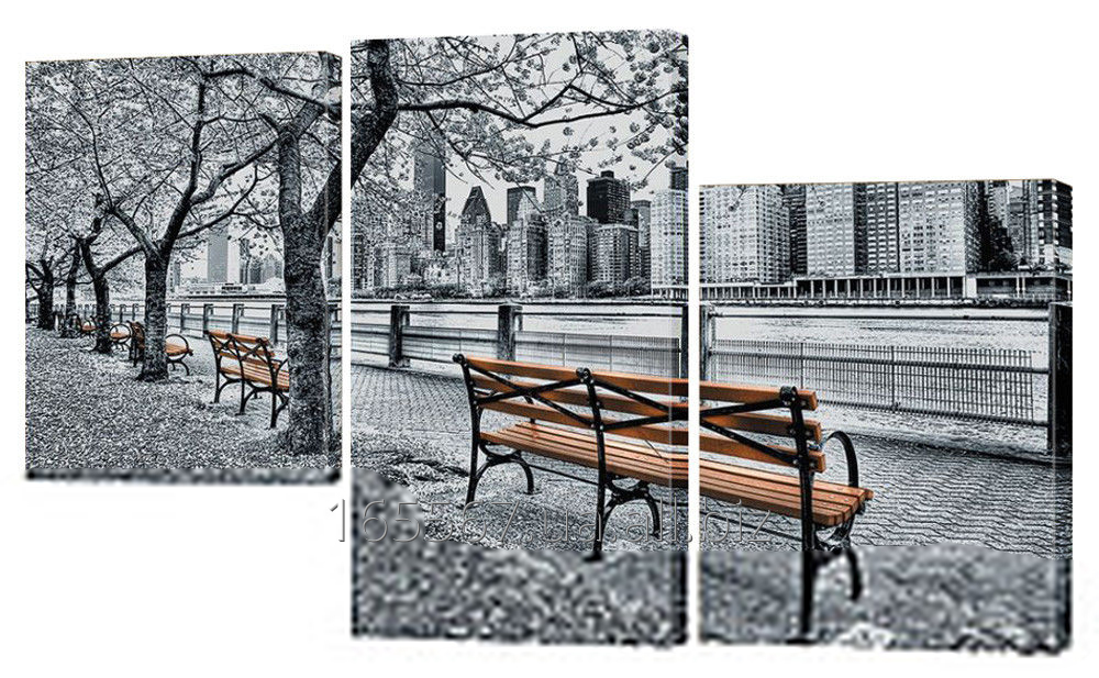 Buy Picture modular 252nd park