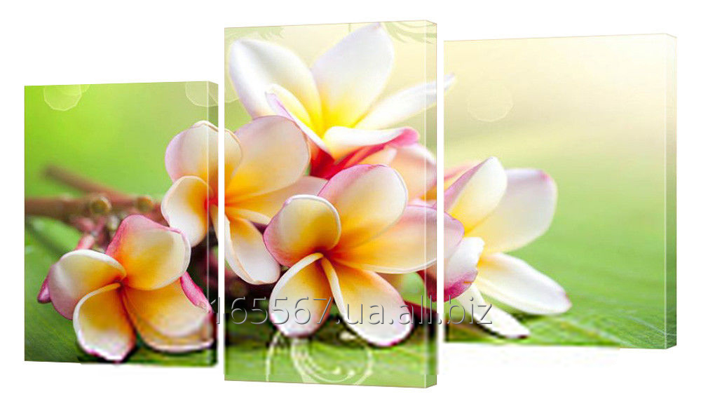 Buy Picture modular 187 Flowers