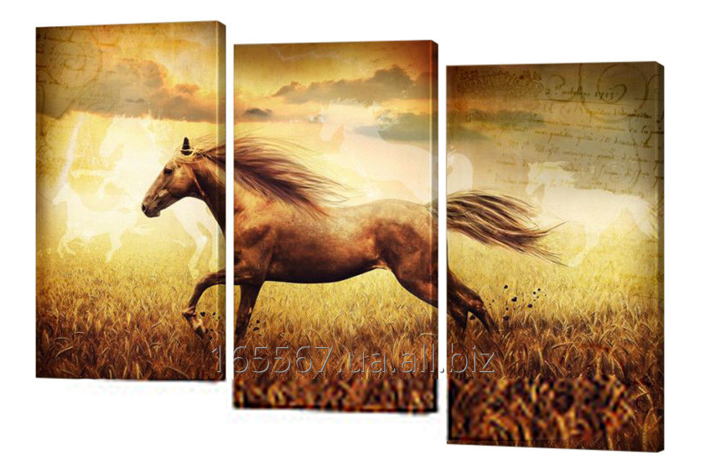 Buy Picture modular 271 Horse