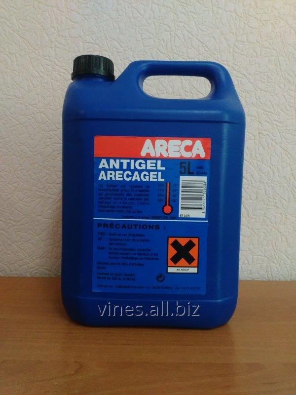 Arbca